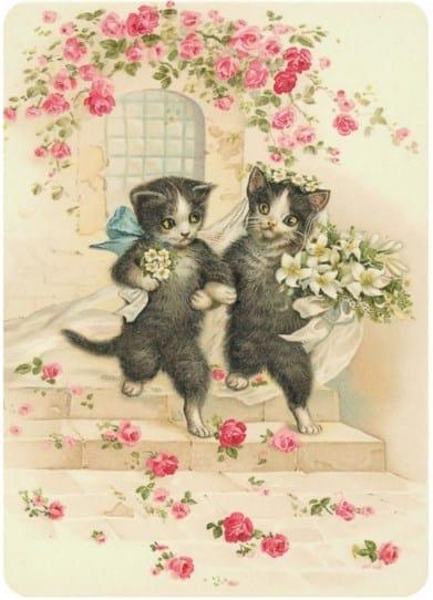 invitación de boda con gatos y flores