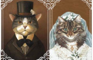 gatos casándose