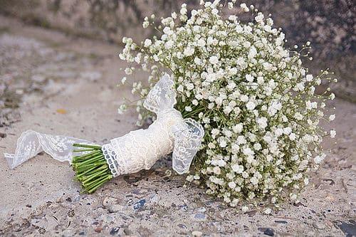 Bouquet blanco de paniculata