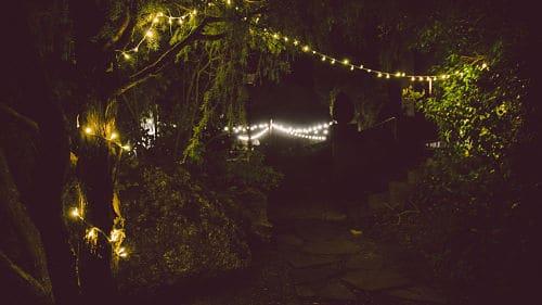 Banquete de boda en el bosque