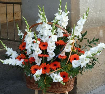 Flores para la Virgen