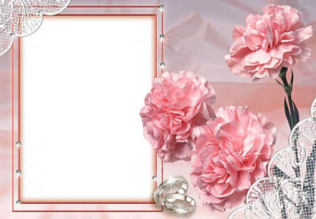 Claveles rosas alianzas de boda