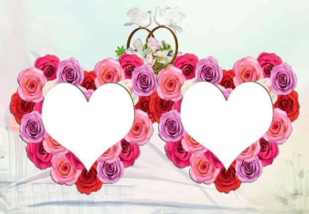 Corazones rosas rosas