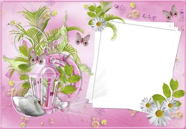 Farol rosa con plantas para foto