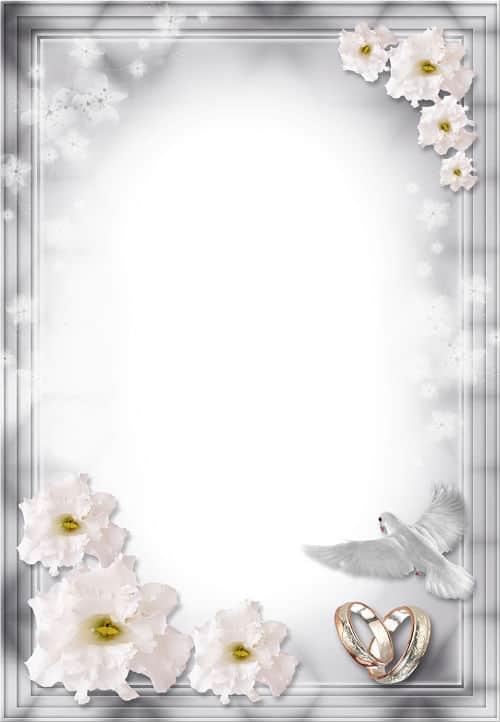 Flores blancas y paloma