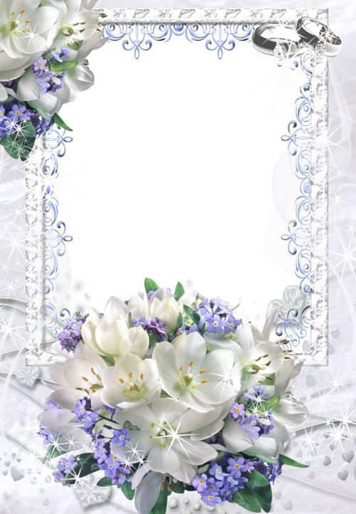 Flores blancas para fotos