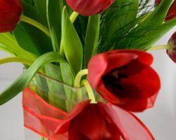 Flores en rojo y verde
