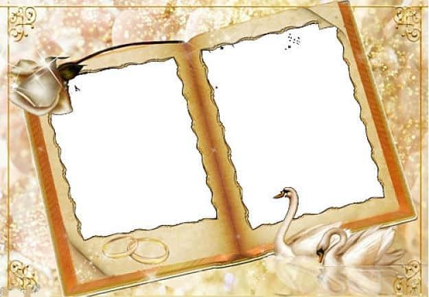 Libro firmas con alianzas de boda