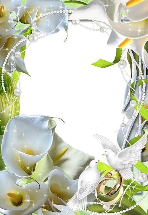 Marco calas blancas y alianzas de boda