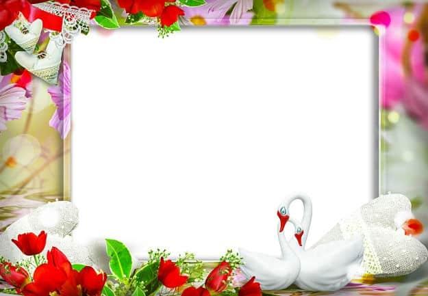 Marco cuadrado cisnes y tulipanes rojos
