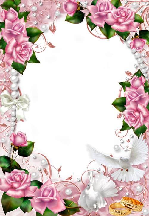 Marco rosas rosas con alianzas de boda