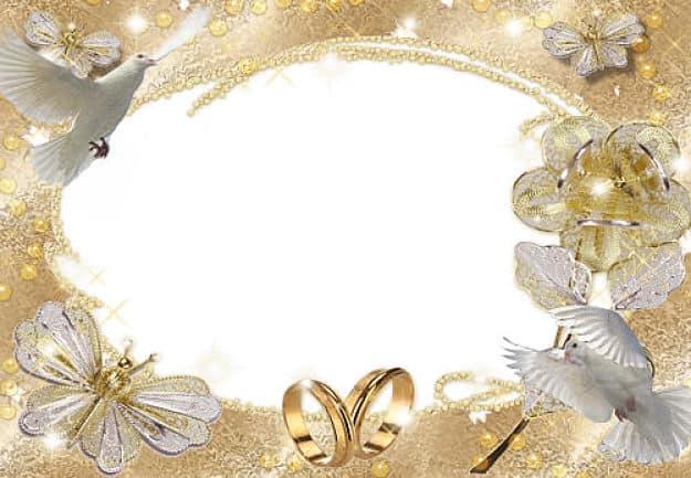 Palomas blancas mariposas con alianzas de boda
