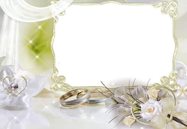 Rosa blanca calas y alianzas de boda