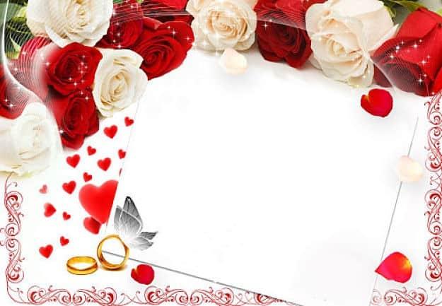 Rosas blancas rojas con alianzas de boda