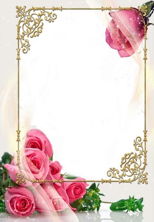 Rosas rosas marco labrado