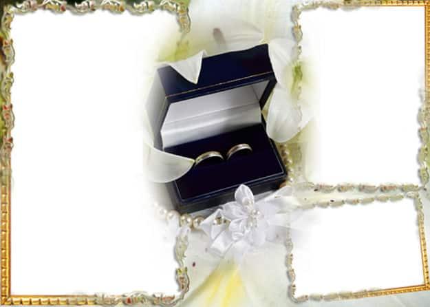Tres fotos anillos de boda