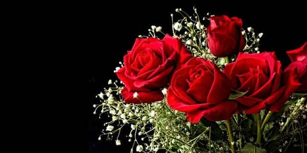 significado bodas de rosas