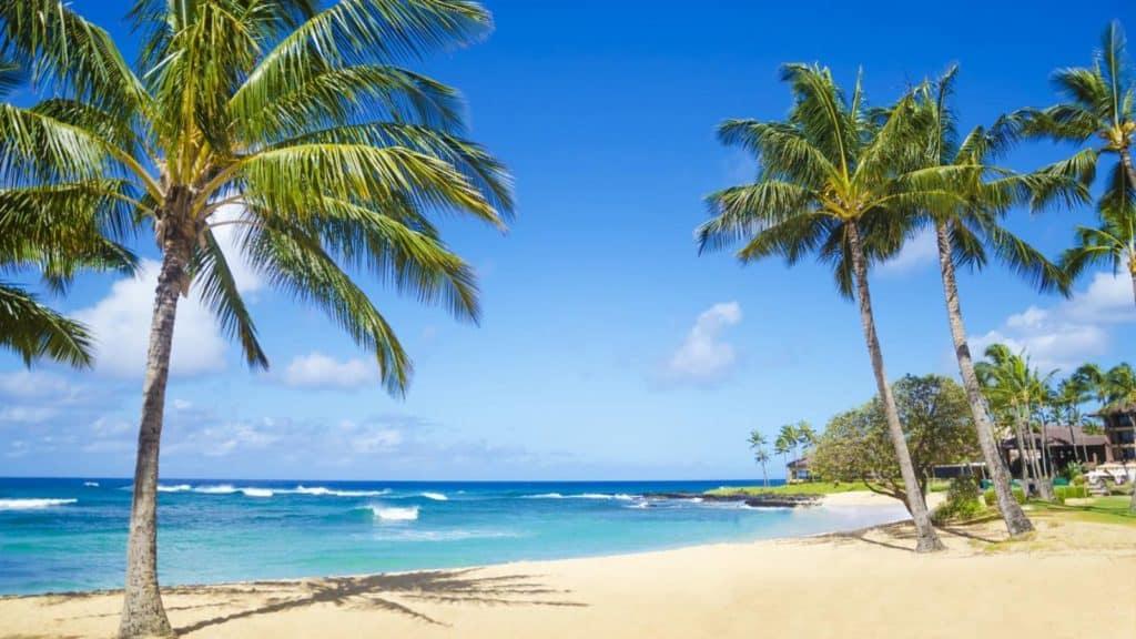 luna de miel estados unidos-hawai_1